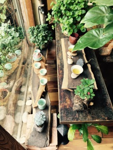 Zen Tea Shop