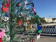 Locks on Trees at bridge