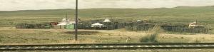 Mongolian yurt tracks