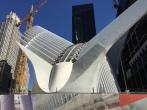 Calatrava Transportation Hub
