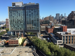 View of Highline from Whitney