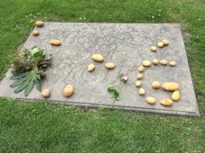 Potato tributes to Friedrich