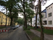 Street with multi-family housing by Gropius