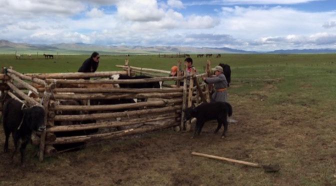 Day 48: Mongolia 2