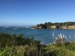 Mendocino Little River Cove