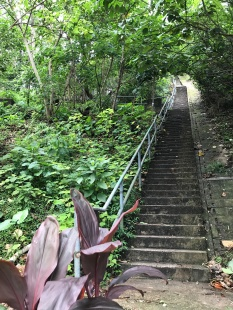 Staircase to the Peak from Pokfulam