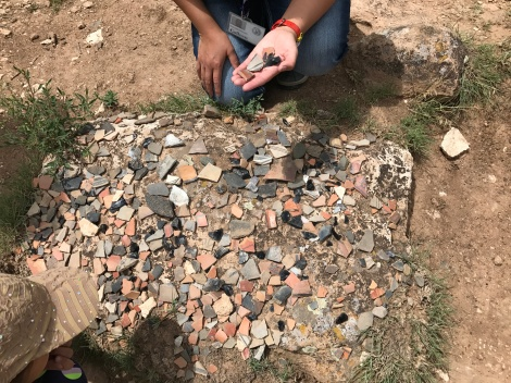 Shards of Pottery found in area